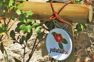 庭の植木のネームプレート
