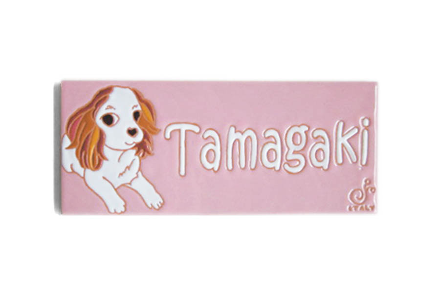 tamagakisama-1