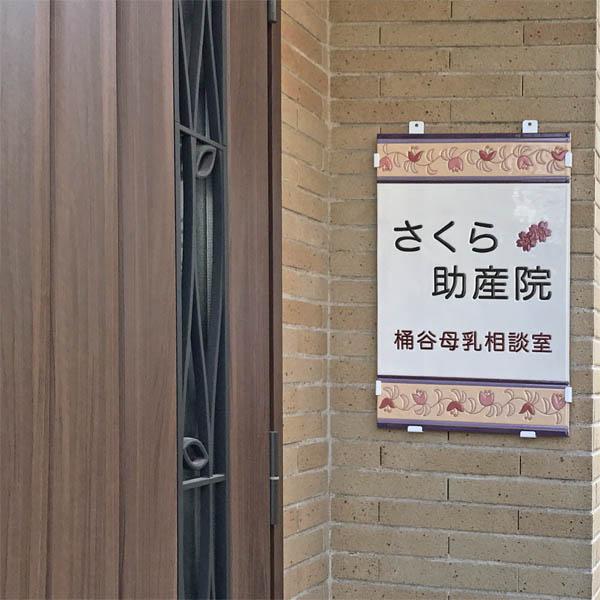 170507-600-sakura-2